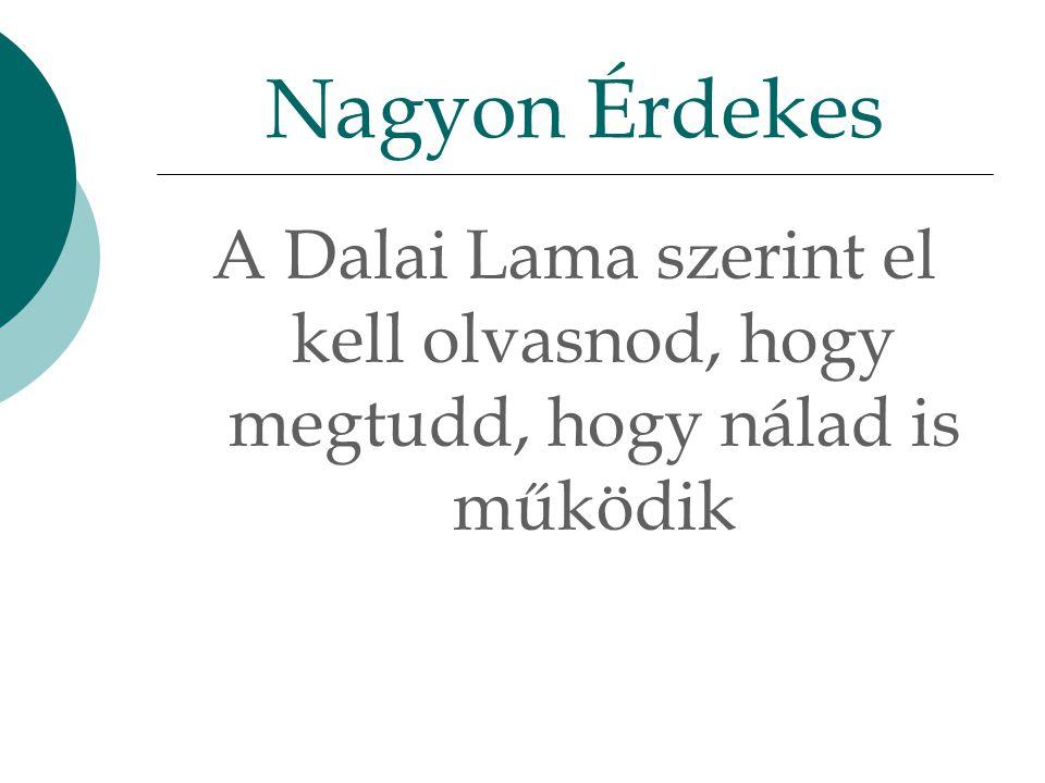 A Dalai Lama szerint el kell olvasnod, hogy megtudd, hogy nálad is működik Nagyon Érdekes