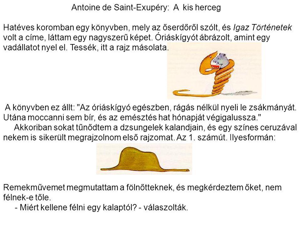Antoine de Saint-Exupéry: A kis herceg Hatéves koromban egy könyvben, mely az őserdőről szólt, és Igaz Történetek volt a címe, láttam egy nagyszerű ké