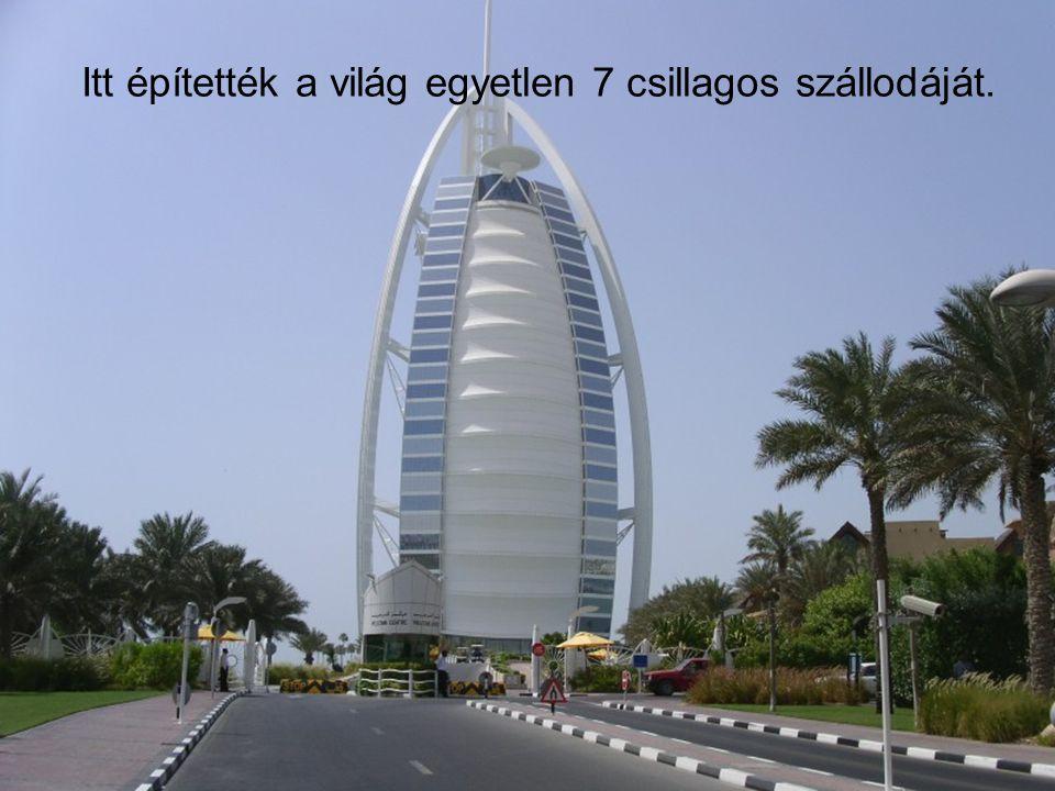 A legek városa Eddig is kiderült, hogy Dubai törekszik mindenben a legek városa lenni Még több leg…→