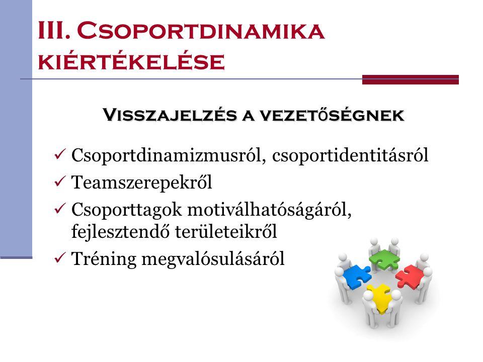 III. Csoportdinamika kiértékelése Visszajelzés a vezet ő ségnek Csoportdinamizmusról, csoportidentitásról Teamszerepekről Csoporttagok motiválhatóságá