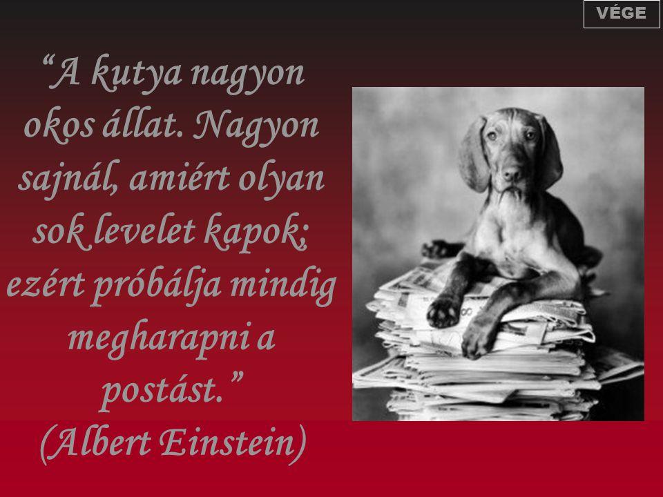 """""""A kutya nagyon okos állat. Nagyon sajnál, amiért olyan sok levelet kapok; ezért próbálja mindig megharapni a postást."""" (Albert Einstein) VÉGE"""