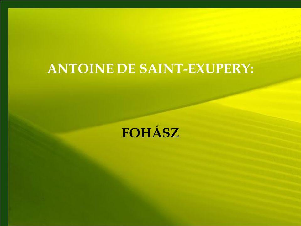 ANTOINE DE SAINT-EXUPERY: FOHÁSZ