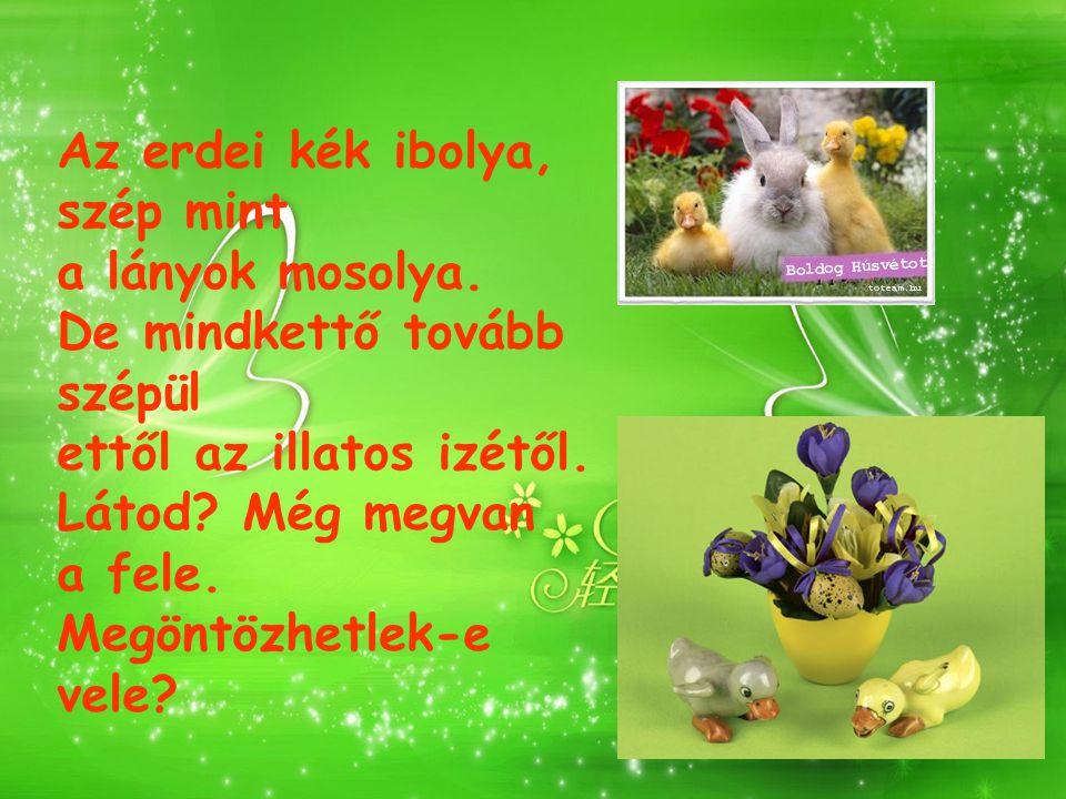 Én vagyok a török, locsolkodni jövök. Ha nem kapok piros tojást, mindent összetörök!