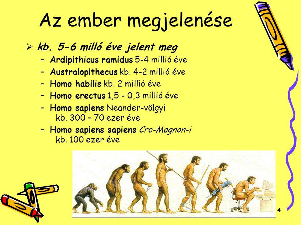 4 Az ember megjelenése  kb. 5-6 milló éve jelent meg –Ardipithicus ramidus 5-4 millió éve –Australopithecus kb. 4-2 millió éve –Homo habilis kb. 2 mi