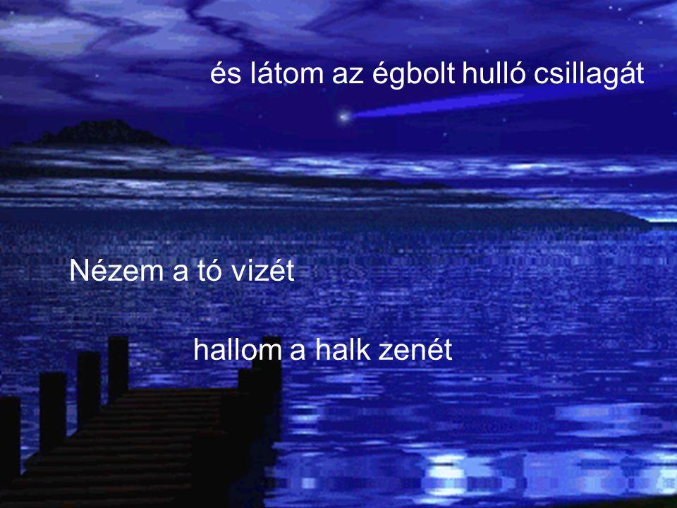Nézem a tó vizét hallom a halk zenét és látom az égbolt hulló csillagát