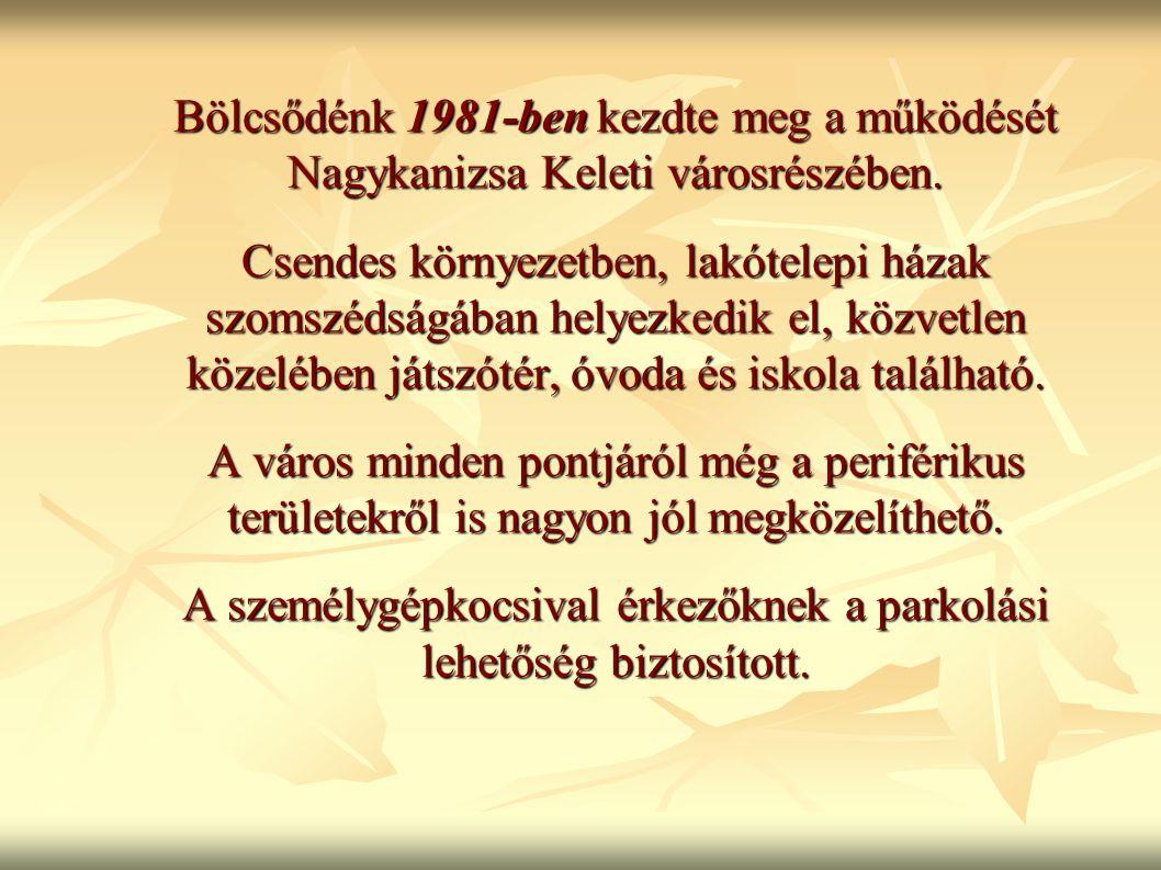 Bölcsődénk 1981-ben kezdte meg a működését Nagykanizsa Keleti városrészében. Csendes környezetben, lakótelepi házak szomszédságában helyezkedik el, kö