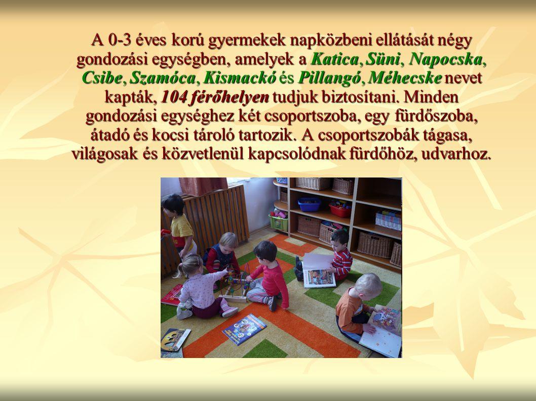 A 0-3 éves korú gyermekek napközbeni ellátását négy gondozási egységben, amelyek a Katica, Süni, Napocska, Csibe, Szamóca, Kismackó és Pillangó, Méhec