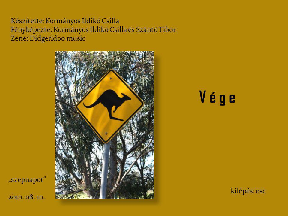 Olykor csak messziről figyeltük a kengurukat, hogy ne zavarjuk az életüket. De bármikor, bárhol találkoztunk velük, ők is, és mi is betarottuk azt a s