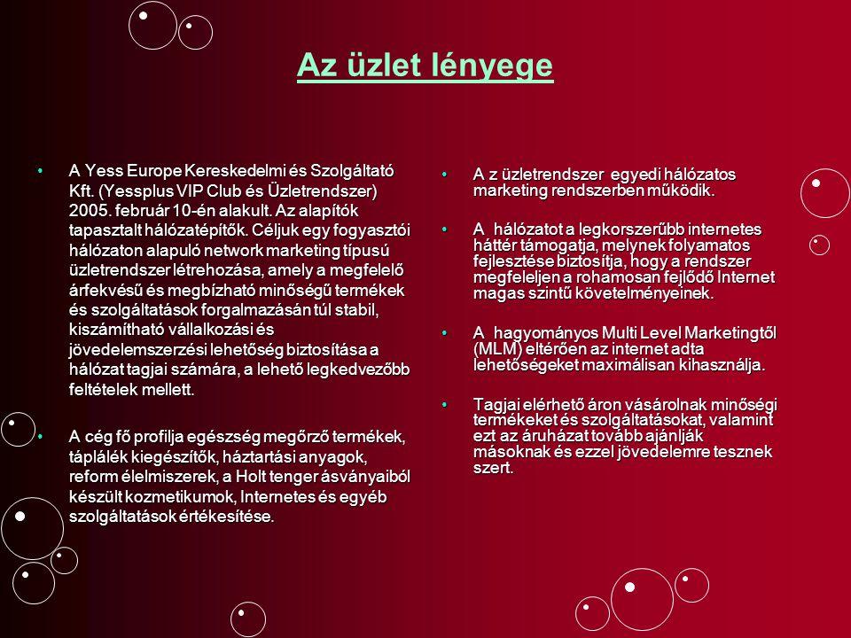 Az üzlet lényege A Yess Europe Kereskedelmi és Szolgáltató Kft. (Yessplus VIP Club és Üzletrendszer) 2005. február 10-én alakult. Az alapítók tapaszta