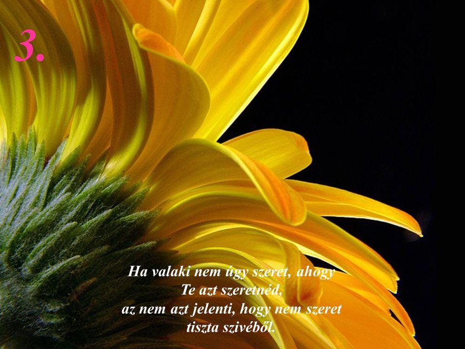 2 Senki nem érdemli könnyeid, aki megérdemelné, az biztosan nem akar sírni látni. 2.2.