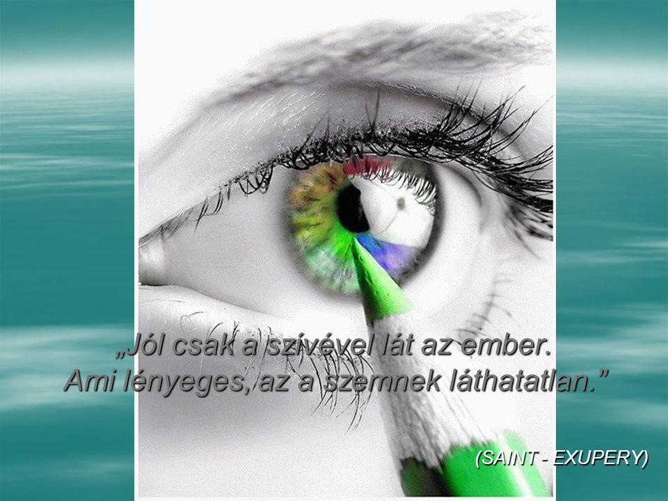 """""""Jól csak a szívével lát az ember. Ami lényeges, az a szemnek láthatatlan. (SAINT - EXUPERY)"""