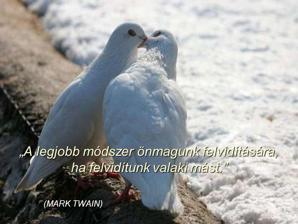 """""""A boldogság szeretet kérdése, semmi másé. Aki szeretni tud, az boldog ember. (Hermann Hesse)"""
