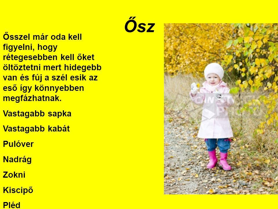 Ősz Ősszel már oda kell figyelni, hogy rétegesebben kell őket öltöztetni mert hidegebb van és fúj a szél esik az eső így könnyebben megfázhatnak. Vast