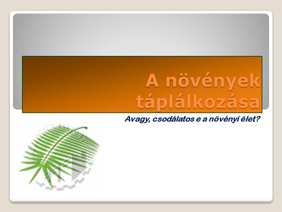 A növények táplálkozása Avagy, csodálatos e a növényi élet?
