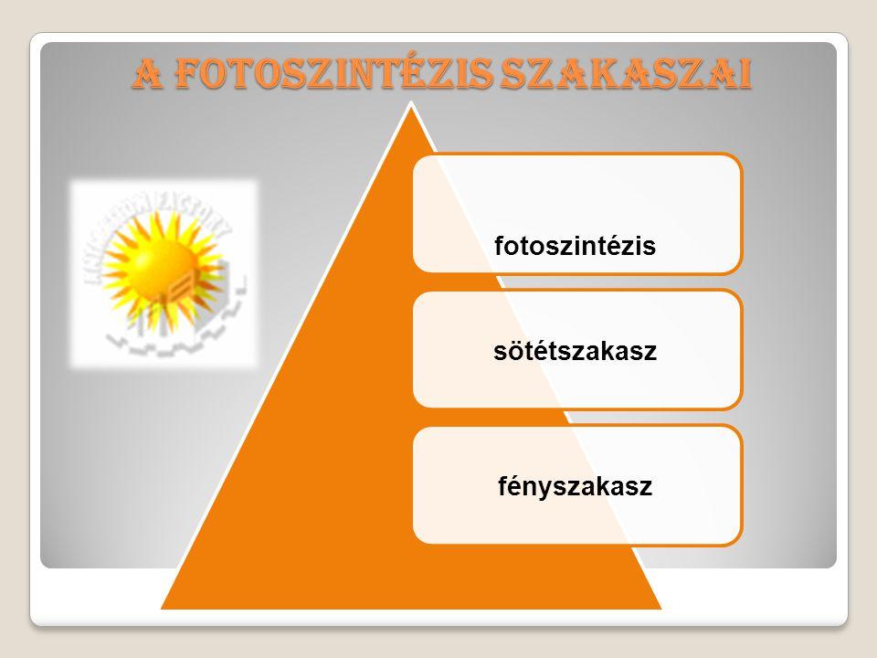 DefinicióDefinició