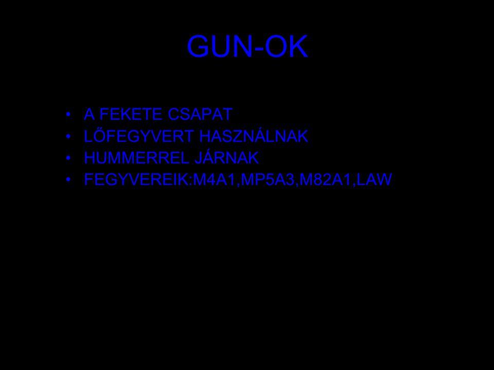GUN-OK A FEKETE CSAPAT LŐFEGYVERT HASZNÁLNAK HUMMERREL JÁRNAK FEGYVEREIK:M4A1,MP5A3,M82A1,LAW