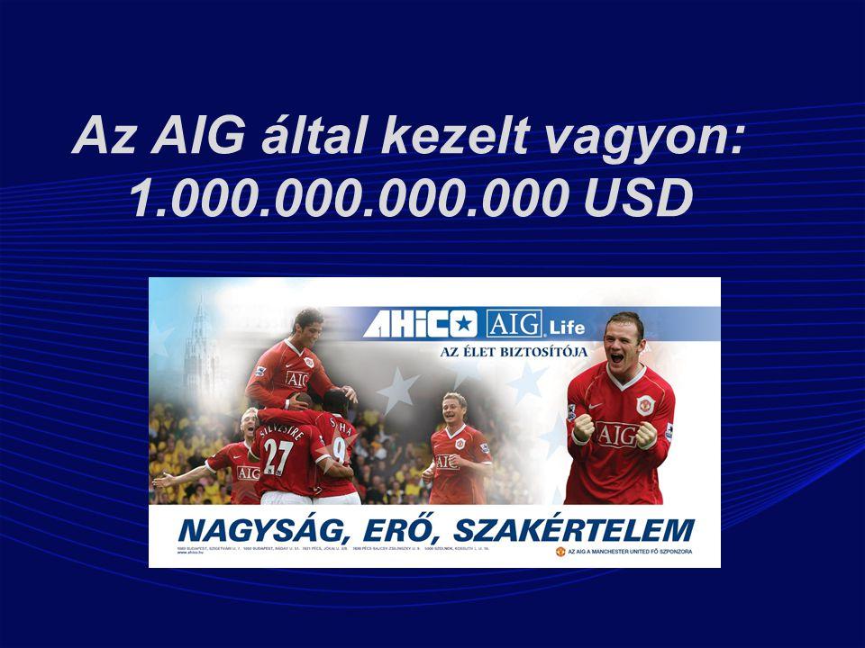 Az AIG által kezelt vagyon: 1.000.000.000.000 USD