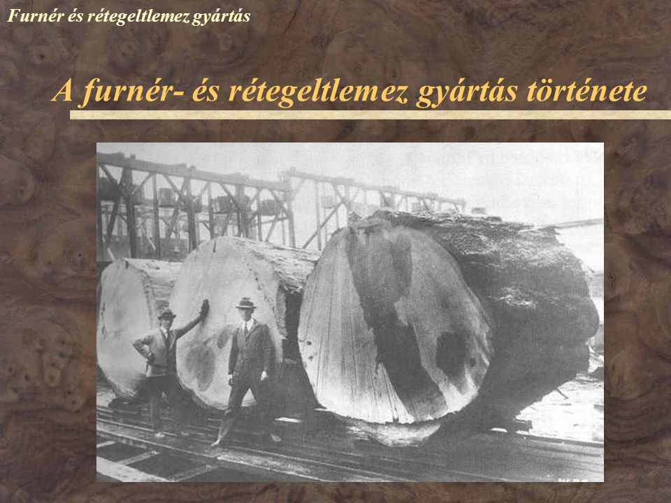 Furnér és rétegeltlemez gyártás '70-es évek – sok kisebb MGTSz, üzem 1976 – BUFA + Budapesti Fűrészek – Fűrész-, Lemez és Hordóipari Vállalat (FÜRLEMHO) 1979 – Cegléd: rétegelt idomtermék üzem 1990 – Letenye: ZEFAG műszaki furnér üzem 1990 – BEFAG – franciavágási furnér- és idomtermék üzem 1990 – Székesfehérvár: ITALAÍV Kft.