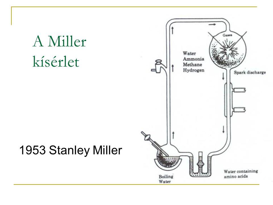 1953 Stanley Miller A Miller kísérlet