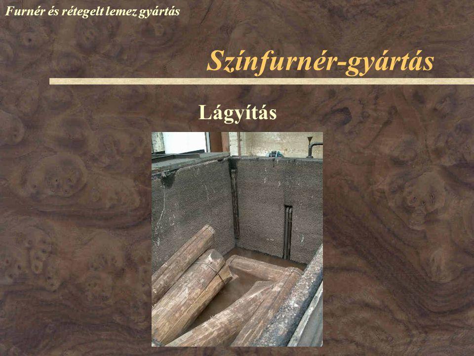 Színfurnér-gyártás Furnér és rétegelt lemez gyártás Lágyítás