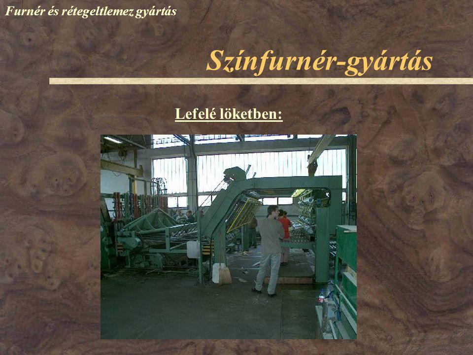 Színfurnér-gyártás Furnér és rétegeltlemez gyártás Lefelé löketben: