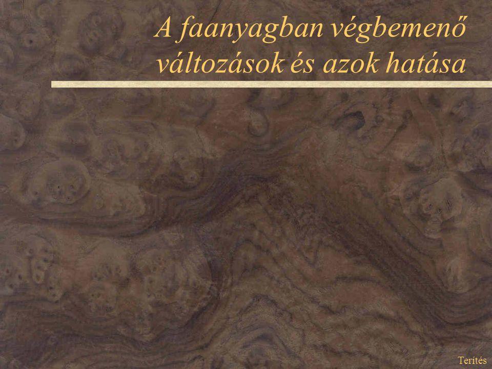 A faanyagban végbemenő változások és azok hatása Terítés