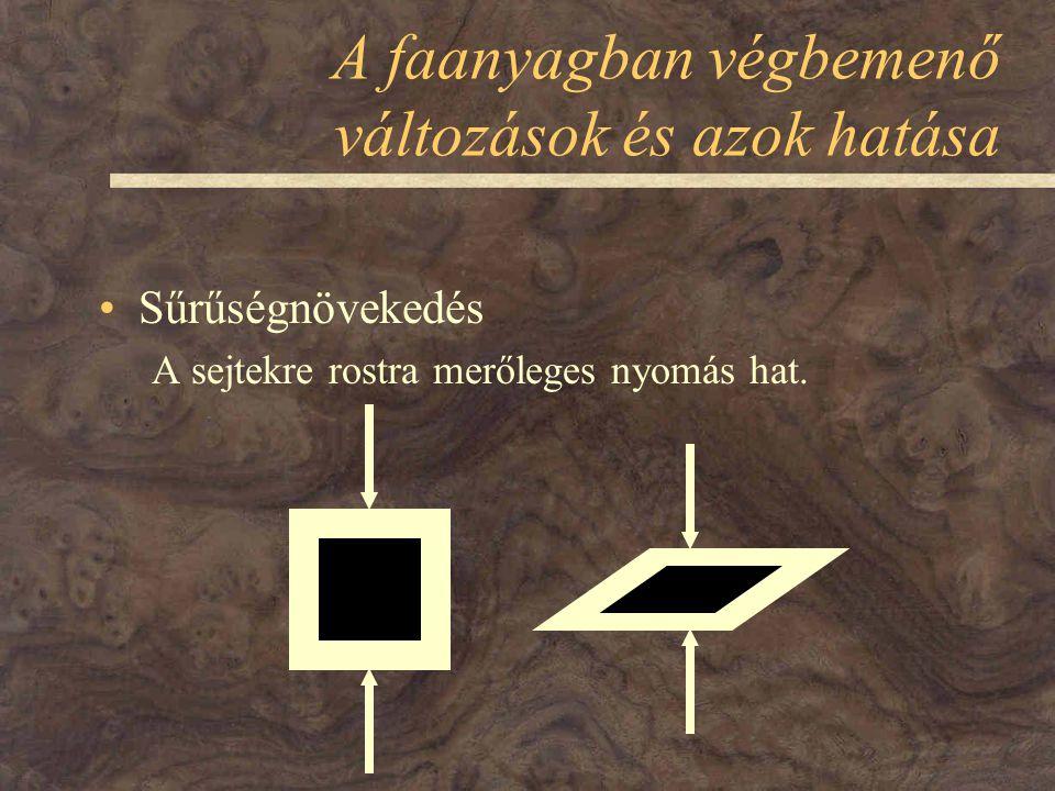 A faanyagban végbemenő változások és azok hatása Sűrűségnövekedés A sejtekre rostra merőleges nyomás hat.