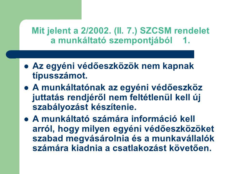 Mit jelent a 2/2002.(II. 7.) SZCSM rendelet a munkáltató szempontjából 1.