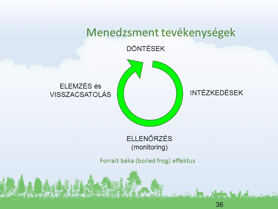 36 Menedzsment tevékenységek Forralt béka (boiled frog) effektus DÖNTÉSEK INTÉZKEDÉSEK ELLENŐRZÉS (monitoring) ELEMZÉS és VISSZACSATOLÁS