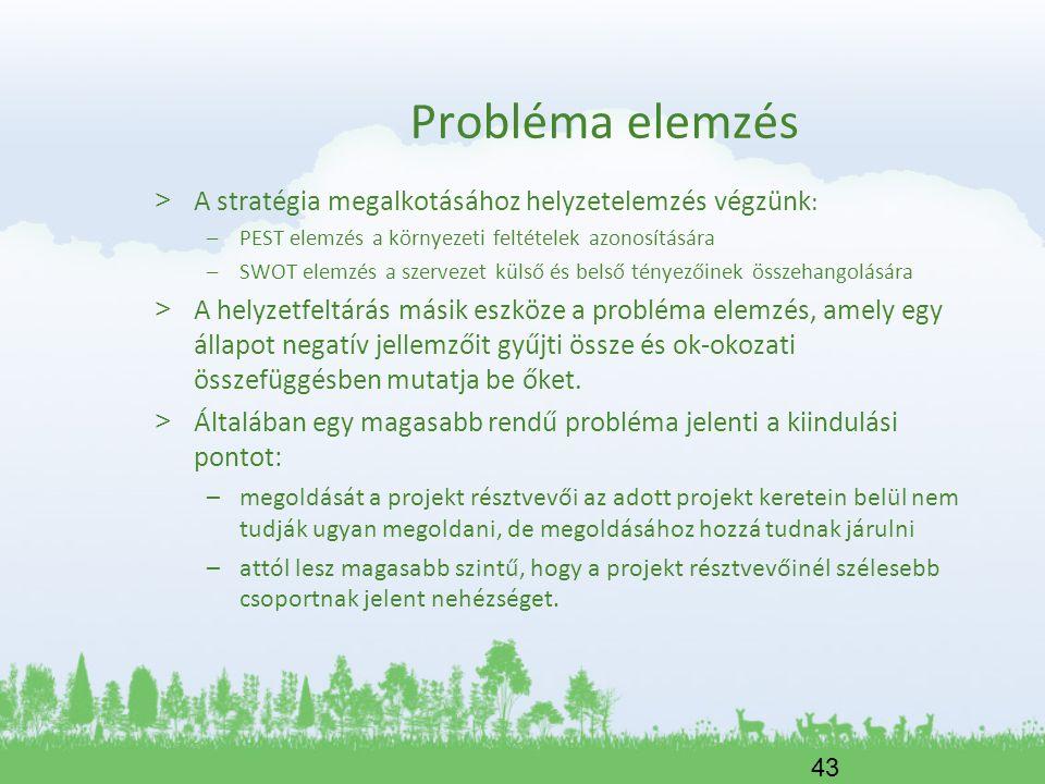 43 Probléma elemzés > A stratégia megalkotásához helyzetelemzés végzünk : –PEST elemzés a környezeti feltételek azonosítására –SWOT elemzés a szerveze