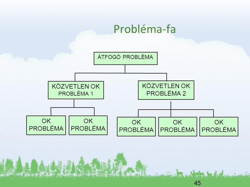 45 Probléma-fa ÁTFOGÓ PROBLÉMA KÖZVETLEN OK PROBLÉMA 1 OK PROBLÉMA KÖZVETLEN OK PROBLÉMA 2 OK PROBLÉMA