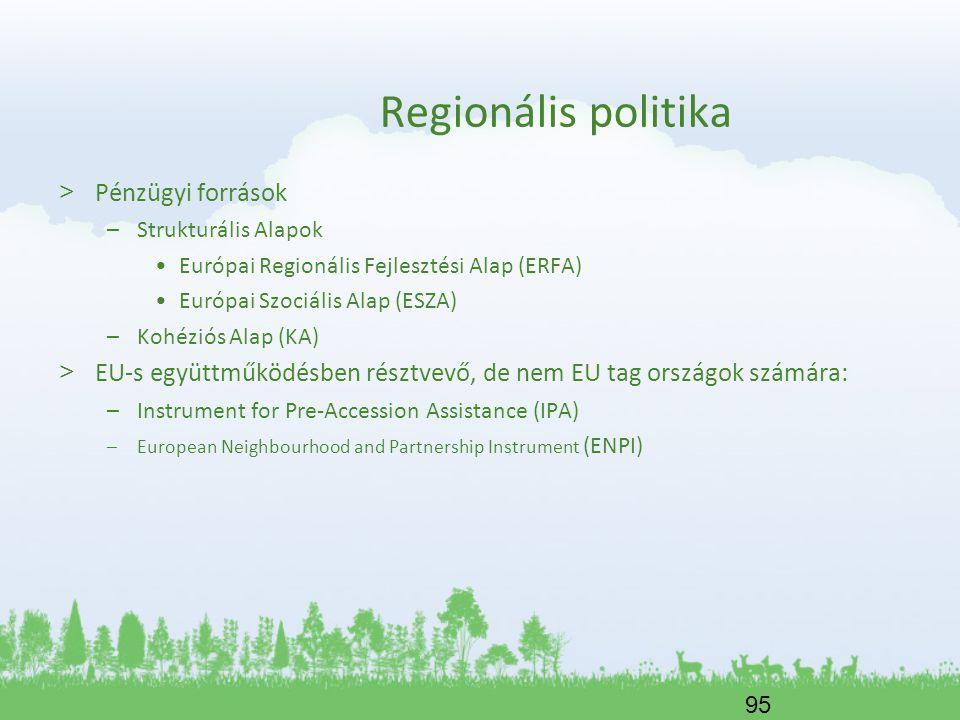 95 Regionális politika > Pénzügyi források –Strukturális Alapok Európai Regionális Fejlesztési Alap (ERFA) Európai Szociális Alap (ESZA) –Kohéziós Ala