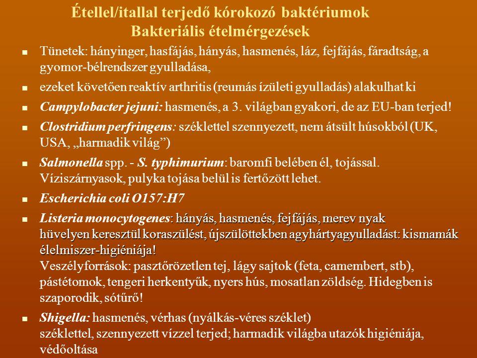 Étellel/itallal terjedő kórokozó baktériumok Bakteriális ételmérgezések Tünetek: hányinger, hasfájás, hányás, hasmenés, láz, fejfájás, fáradtság, a gy