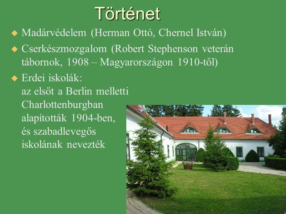 Történet   Madárvédelem (Herman Ottó, Chernel István)   Cserkészmozgalom (Robert Stephenson veterán tábornok, 1908 – Magyarországon 1910-től)  