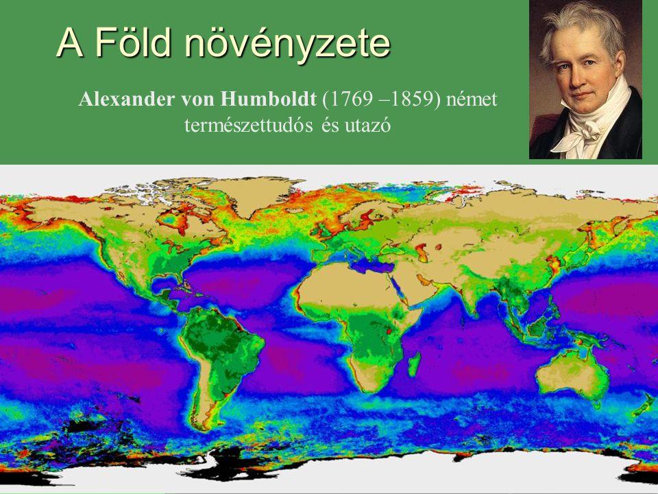 A Föld növényzete Alexander von Humboldt (1769 –1859) német természettudós és utazó