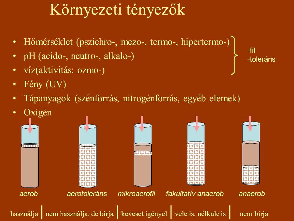 Környezeti tényezők Hőmérséklet (pszichro-, mezo-, termo-, hipertermo-) pH (acido-, neutro-, alkalo-) víz(aktivitás: ozmo-) Fény (UV) Tápanyagok (szén