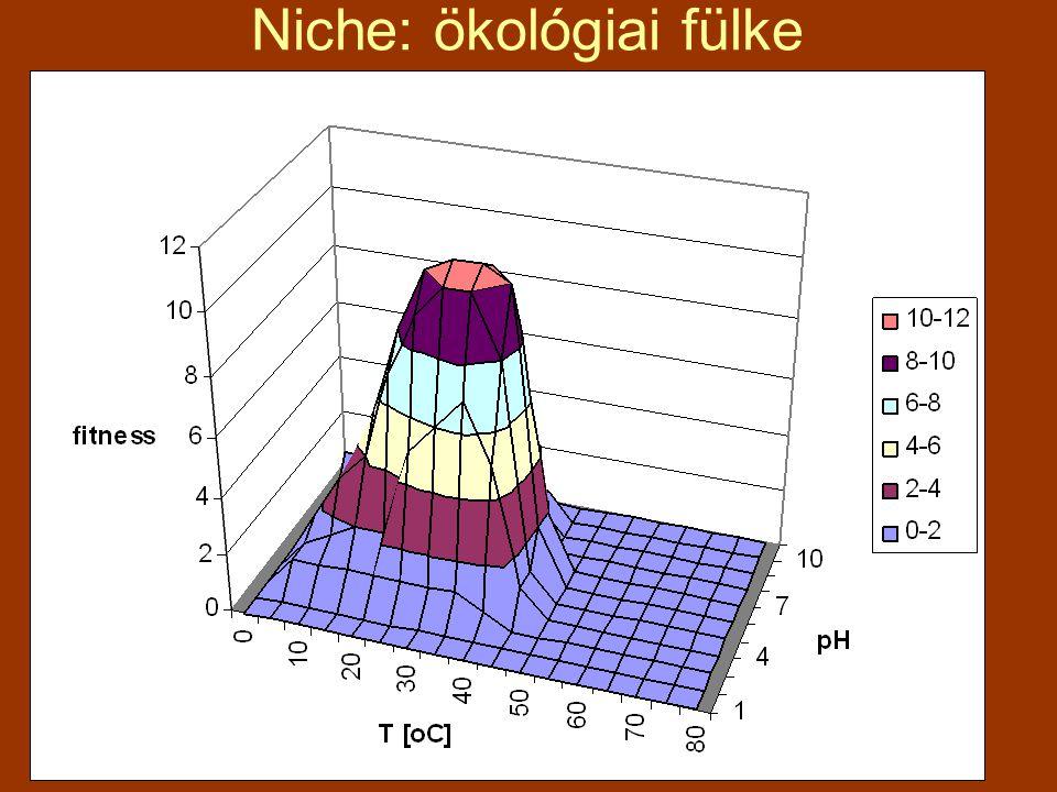 Niche: ökológiai fülke