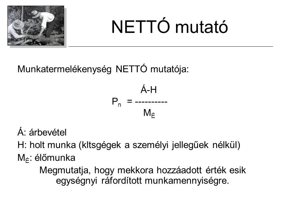 NETTÓ mutató Munkatermelékenység NETTÓ mutatója: Á: árbevétel H: holt munka (kltsgégek a személyi jellegűek nélkül) M É : élőmunka Megmutatja, hogy me