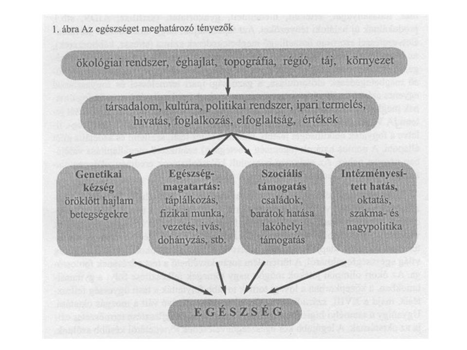 Az egészség-magatartást befolyásoló belső tényezők