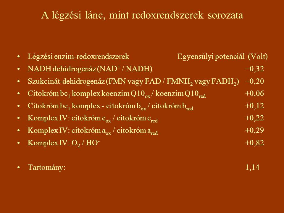A légzési lánc, mint redoxrendszerek sorozata Légzési enzim-redoxrendszerek Egyensúlyi potenciál (Volt) NADH dehidrogenáz (NAD + / NADH) −0,32 Szukcin