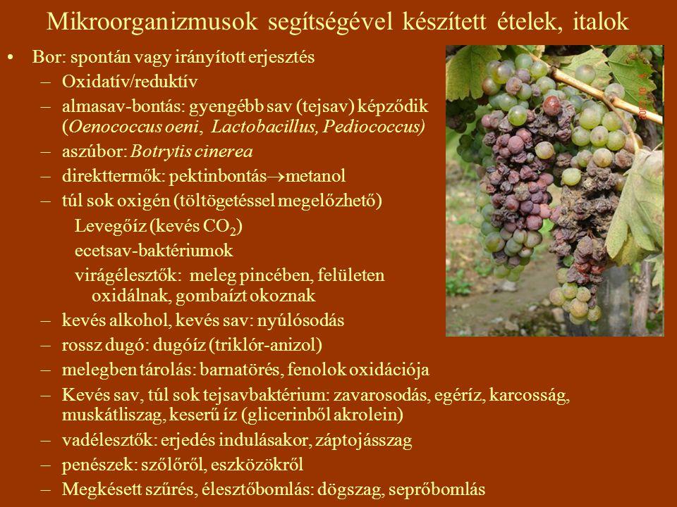 Mikroorganizmusok segítségével készített ételek, italok Bor: spontán vagy irányított erjesztés –Oxidatív/reduktív –almasav-bontás: gyengébb sav (tejsa