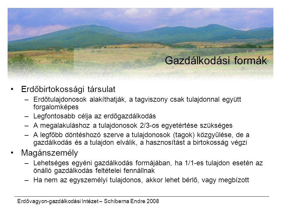 Erdővagyon-gazdálkodási Intézet – Schiberna Endre 2008 Gazdálkodási formák Erdőbirtokossági társulat –Erdőtulajdonosok alakíthatják, a tagviszony csak