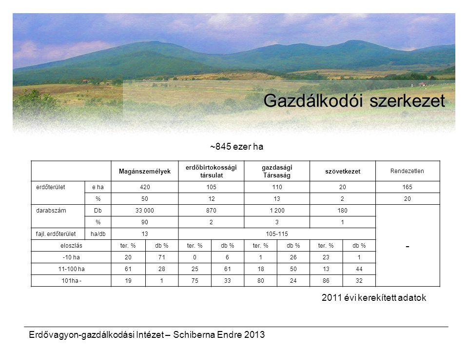 Erdővagyon-gazdálkodási Intézet – Schiberna Endre 2013 Gazdálkodói szerkezet Magánszemélyek erdőbirtokossági társulat gazdasági Társaság szövetkezet R