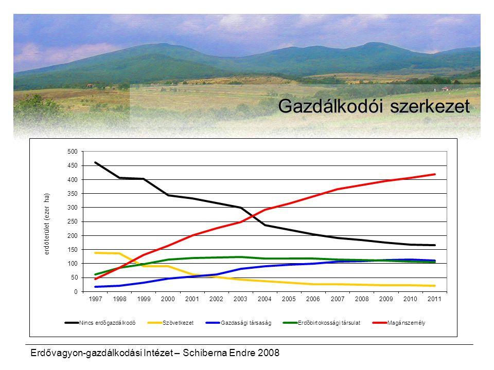 Erdővagyon-gazdálkodási Intézet – Schiberna Endre 2008 Gazdálkodói szerkezet
