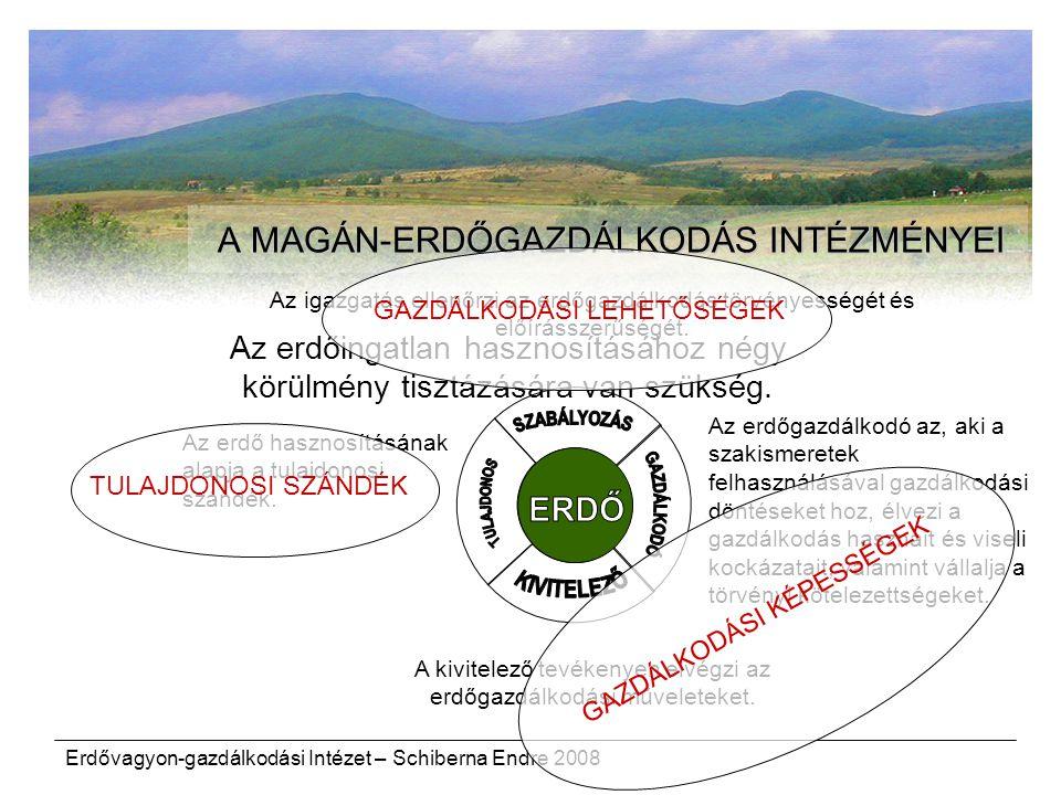 Erdővagyon-gazdálkodási Intézet – Schiberna Endre 2008 Az erdő hasznosításának alapja a tulajdonosi szándék. A MAGÁN-ERDŐGAZDÁLKODÁS INTÉZMÉNYEI Az er