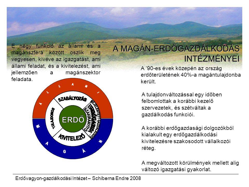Erdővagyon-gazdálkodási Intézet – Schiberna Endre 2008 E négy funkció az állami és a magánszféra között oszlik meg vegyesen, kivéve az igazgatást, ami