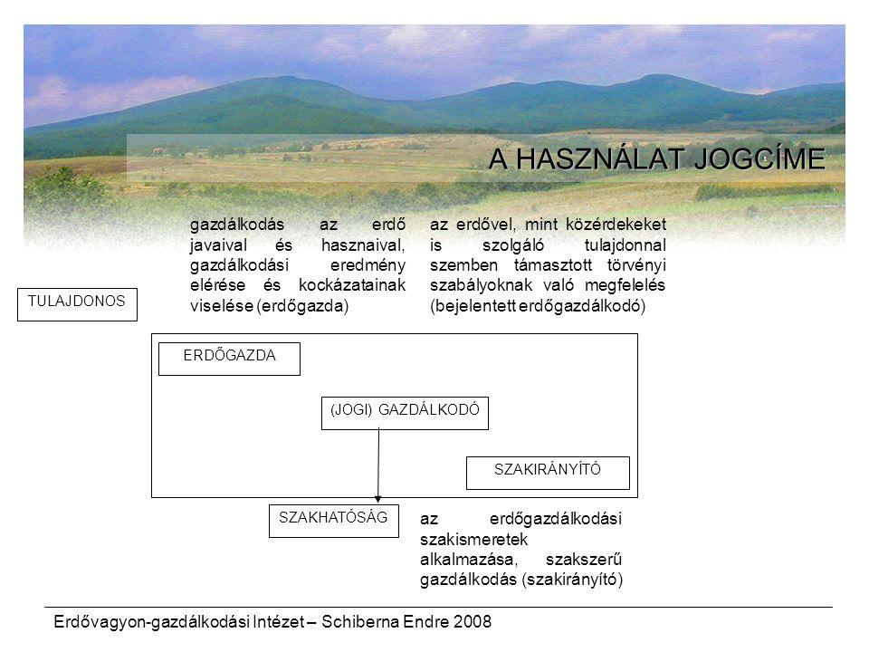 Erdővagyon-gazdálkodási Intézet – Schiberna Endre 2008 A HASZNÁLAT JOGCÍME TULAJDONOS ERDŐGAZDA (JOGI) GAZDÁLKODÓ SZAKHATÓSÁG SZAKIRÁNYÍTÓ gazdálkodás