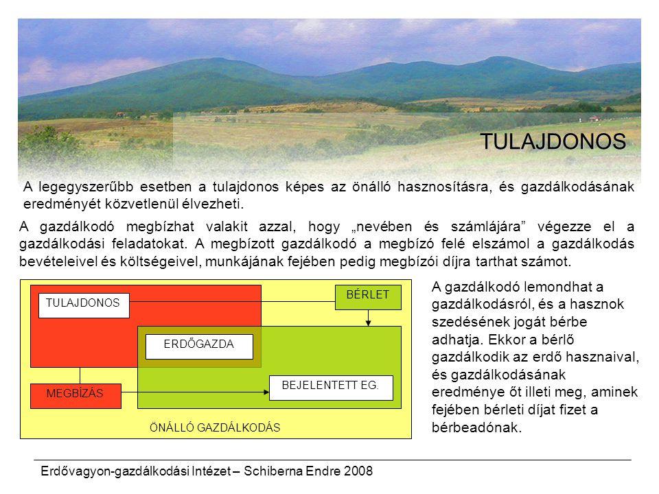 Erdővagyon-gazdálkodási Intézet – Schiberna Endre 2008 ÖNÁLLÓ GAZDÁLKODÁS TULAJDONOS TULAJDONOS ERDŐGAZDA BEJELENTETT EG. MEGBÍZÁS BÉRLET A legegyszer