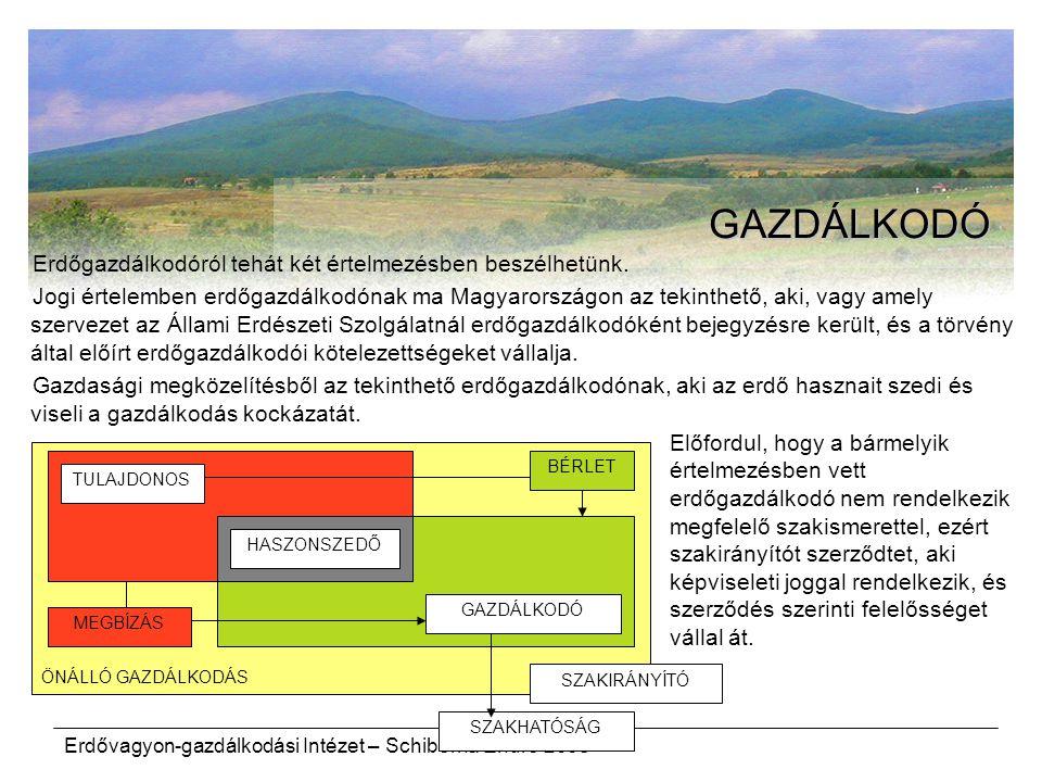 Erdővagyon-gazdálkodási Intézet – Schiberna Endre 2008 ÖNÁLLÓ GAZDÁLKODÁS GAZDÁLKODÓ Erdőgazdálkodóról tehát két értelmezésben beszélhetünk. Jogi érte