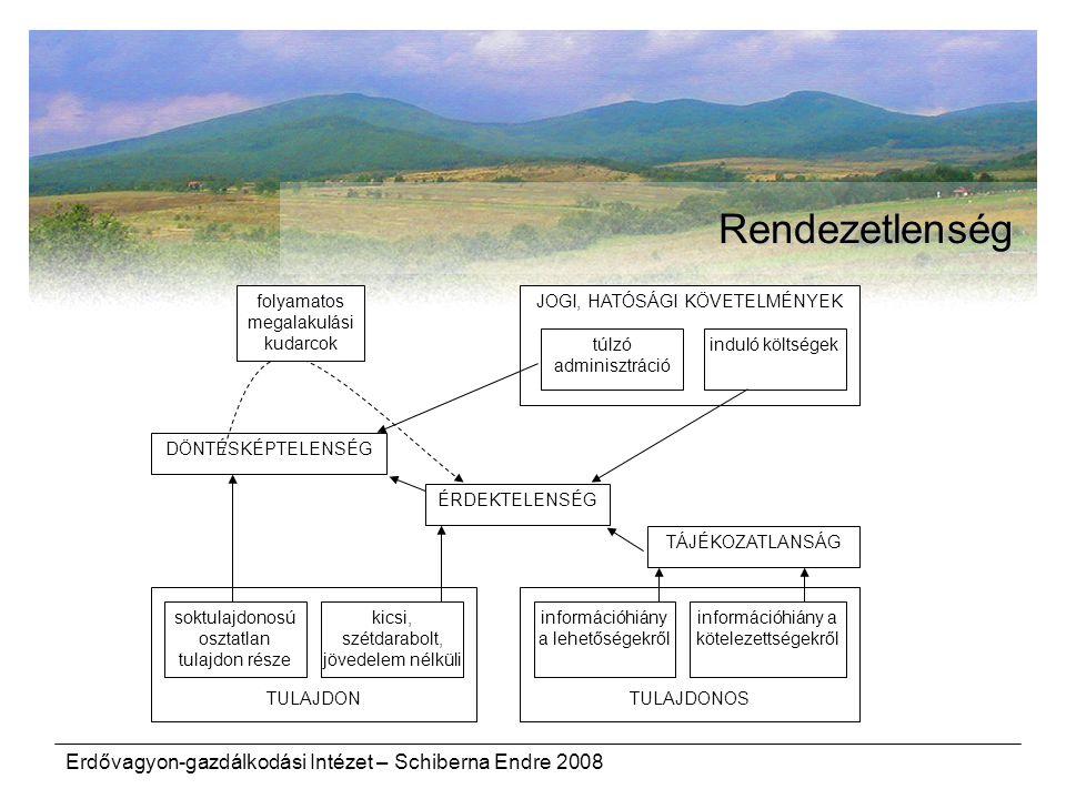 Erdővagyon-gazdálkodási Intézet – Schiberna Endre 2008 Rendezetlenség TULAJDONTULAJDONOS kicsi, szétdarabolt, jövedelem nélküli soktulajdonosú osztatl